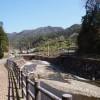 猪谷川水辺公園
