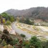 和歌山県植物公園 緑化センター