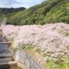 島の瀬ダム