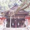 白岩丹生神社