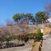 丹鶴城公園(新宮城跡)